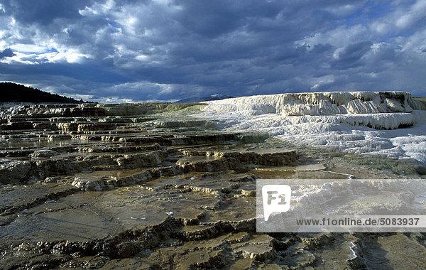 USA  Wyoming  Yellowstone National Park  Mammoth Hot Springs