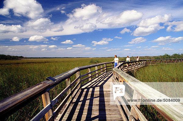 Boardwalk  Everglades National Park  Homestead  Florida  USA