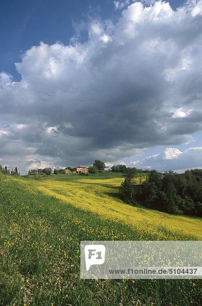 Landschaft, Italien, Toskana