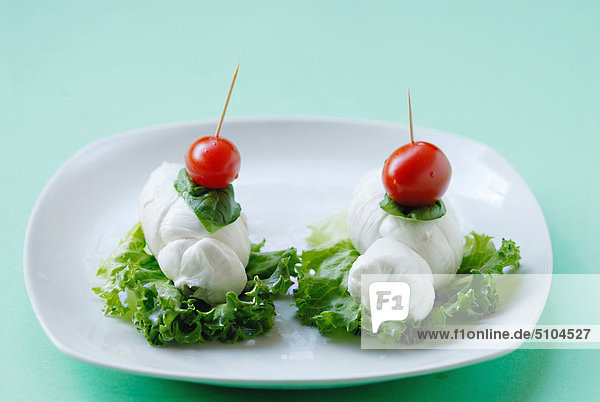 Tomaten  Salat  Basilikum und Mozzarella-Käse