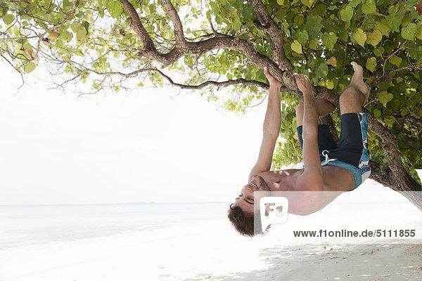 Man climbing tree on tropical beach