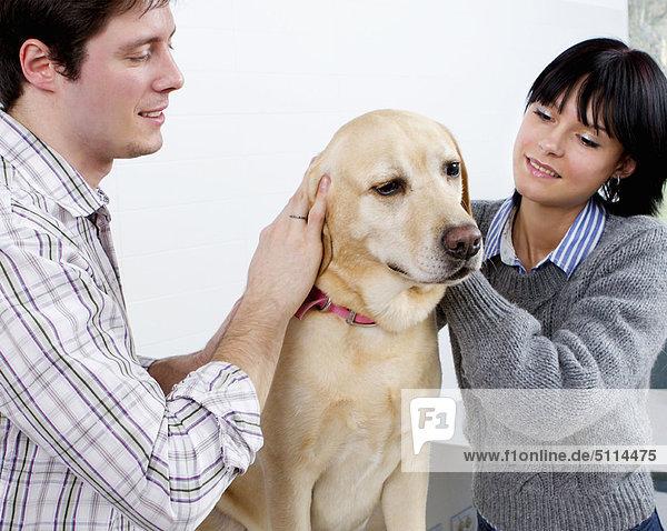 Zusammenhalt  Hund  streicheln
