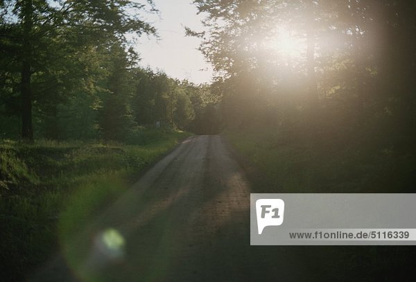 Beschotterte Straße in Skane  Schweden  bei Sonnenuntergang
