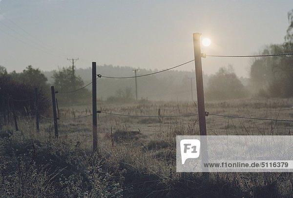 Sonnenaufgang über eine geschlossene Weide a Winter Morgen um Hista Sateri  Mariefred  Schweden