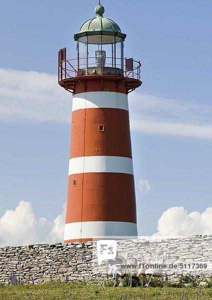 Ein paar mit Picknick an einem Leuchtturm auf Gotland