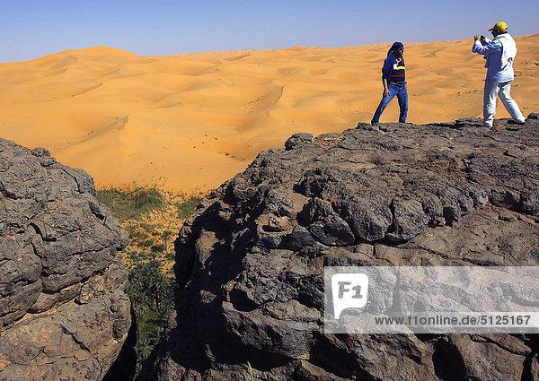 Afrika  Algerien  Sahara  eine Fläche  Bakthi Palm grove