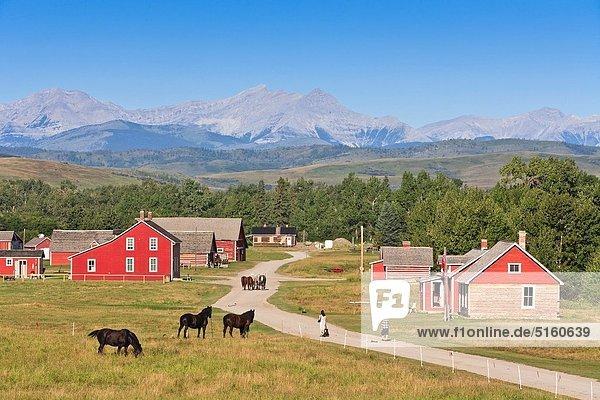 Berg Felsen Geschichte Alberta Kanada Ranch