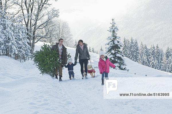 Österreich  Salzburger Land  Flachau  Blick auf Familie mit Weihnachtsbaum und Schlitten im Schnee