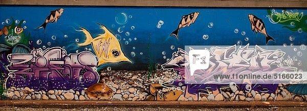 Christchurch  Graffiti  Street-Art  Straßenkunst