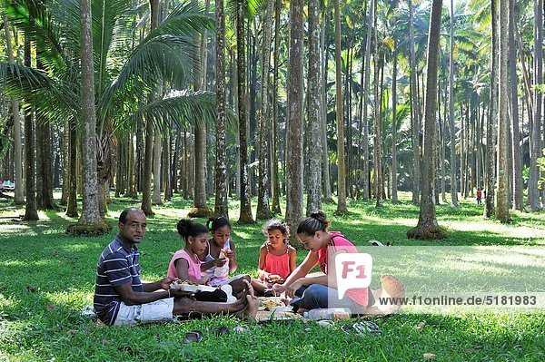 pic nic under palm trees in Anse des Cascades  Sainte-Rose Reunion island  overseas departement of France  Indian Ocean