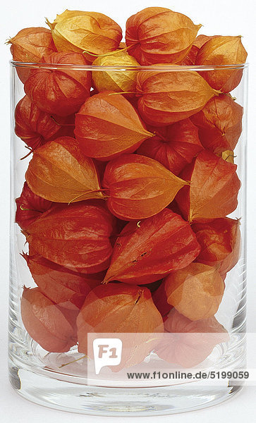 Physalis-Früchte in Großem Glas Physalis-Früchte in Großem Glas