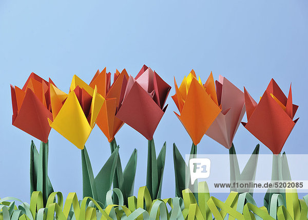 Origami  Tulpen aus Papier gefaltet