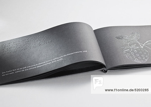 Buch mit Blindenschrift