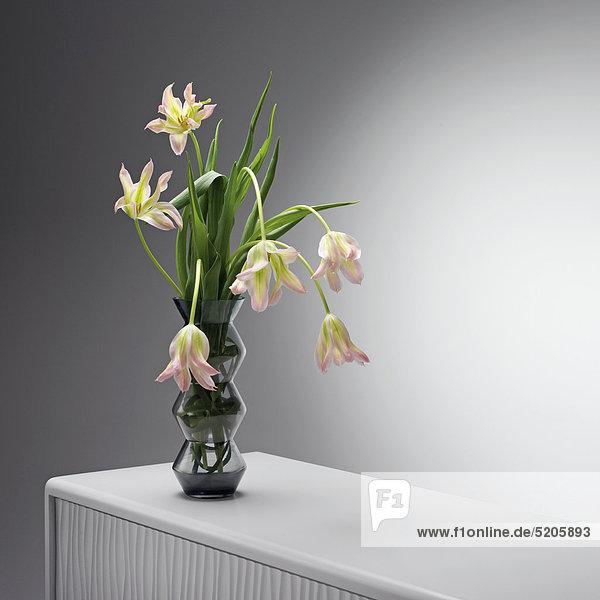 Tulpen in Glasvase