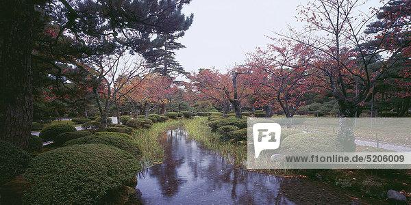 Japanischer Park im Herbst  Japan