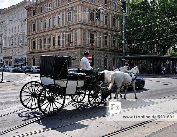 Wien Hauptstadt Europa Straße Transport Österreich