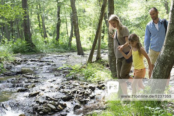 Familie Wandern entlang in Wäldern