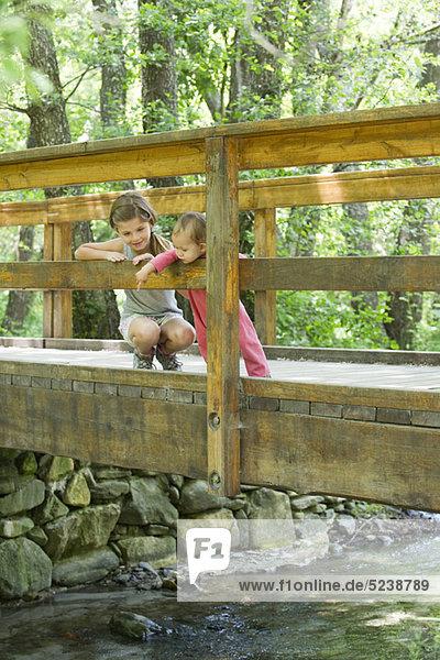 Mädchen und Baby Schwester auf Brücke  blickte auf Stream unten