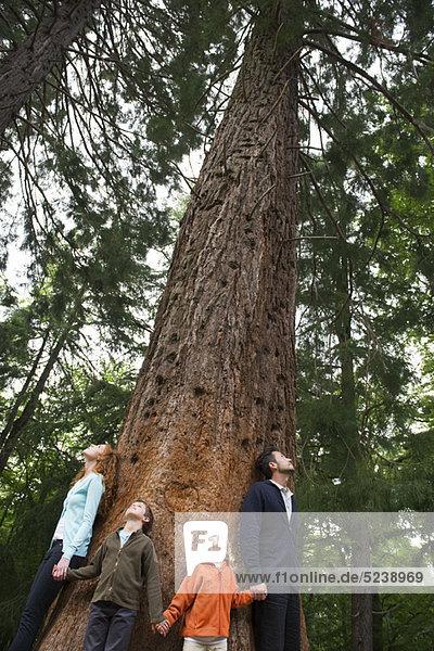 Familie stehen zusammen auf Basis der Baum  Hand in Hand