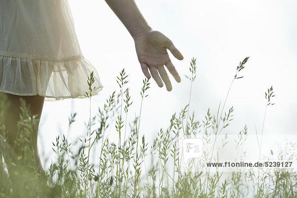 Young woman's Hand berühren hohem Gras Young woman's Hand berühren hohem Gras