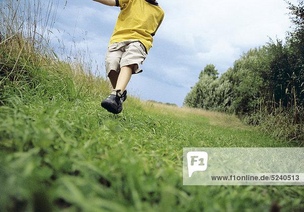 Kleiner Junge läuft auf Wiese  angeschnitten