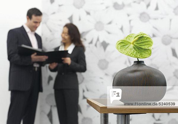 Büro  Vase mit großer grüner Aronstabblüte  zwei Personen im Hintergrund