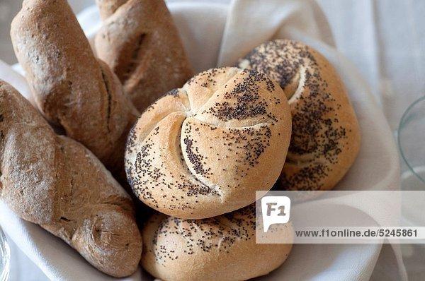 tippen  Brot  Vielfalt  Samen  Mohn