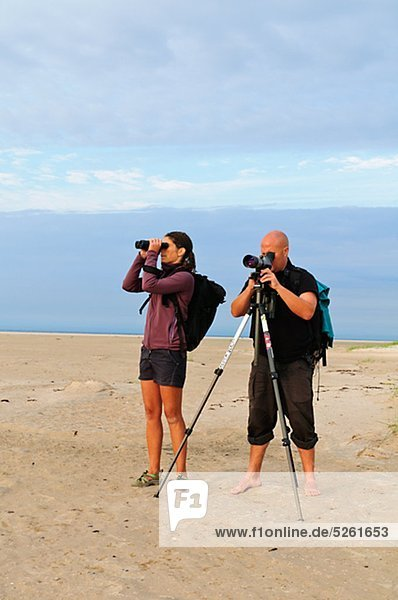 Two people watching birds on beach