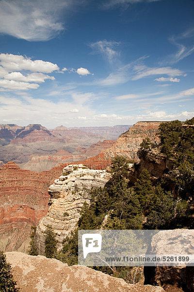 Südrand des Grand Canyon  Arizona  USA