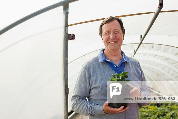 Man holding pot plant in polytunnel  portrait