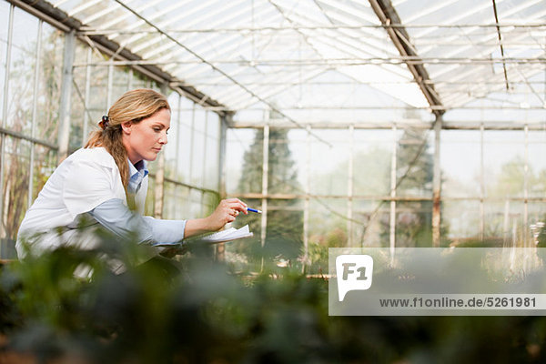 Woman inspecting plants in nursery