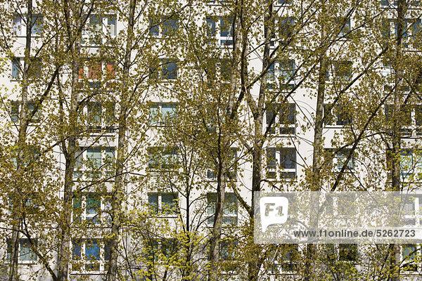 Apartments  Berlin  Deutschland
