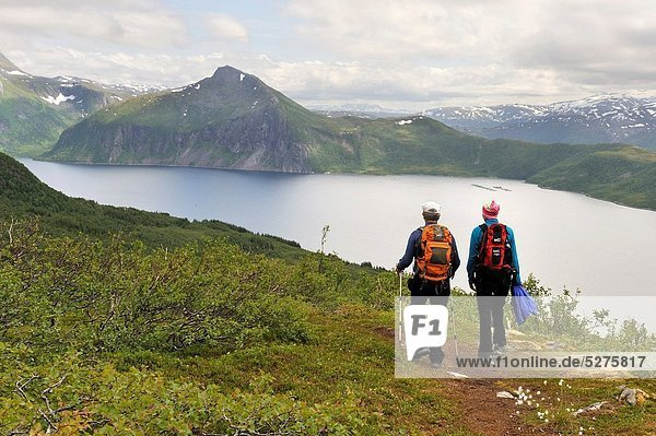 view over the fjord Bergsfjorden from Husfjellet mountain  Senja island County of Troms  Norway  Northern Europe