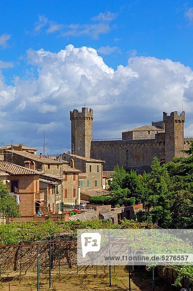 Europa Palast Schloß Schlösser UNESCO-Welterbe Italien Montalcino Toskana