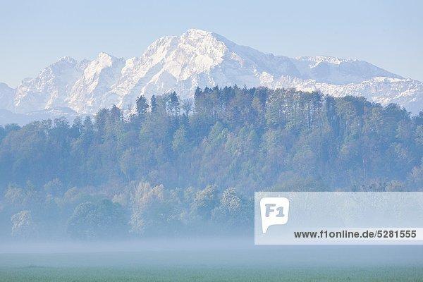 Blick zum Hohen Göll  Berchtesgadener Alpen  Österreich