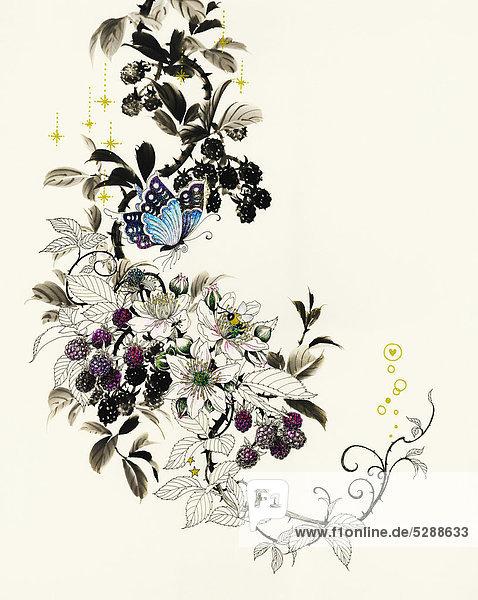 Schmetterlinge auf einem Brombeerstrauch