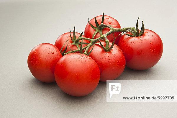 Taufrische Tomaten
