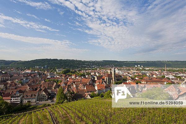 Blick von der Burg auf Esslingen  Weinberg  Weinbau  Baden-W¸rttemberg  Deutschland  Europa