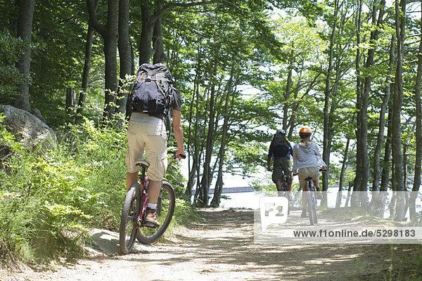 Radfahrer im Wald  Rückansicht