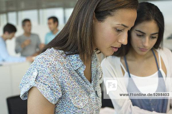 Weibliche Kollegen  die gemeinsam im Amt arbeiten