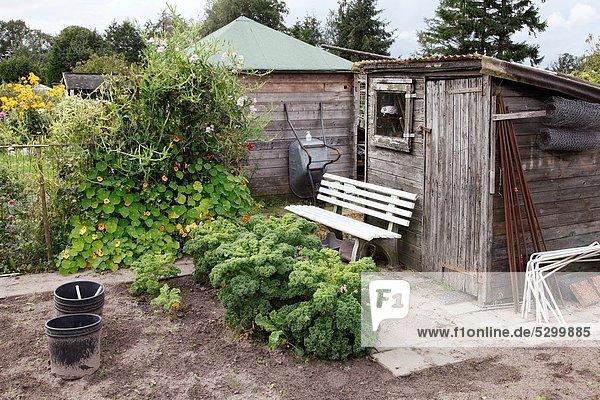 Schrebergarten Gemüse Werkzeug Niederlande Schuppen
