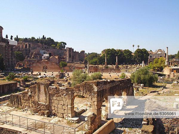 Ruinen im Forum Romanum  Rom  Latium  Italien  Europa