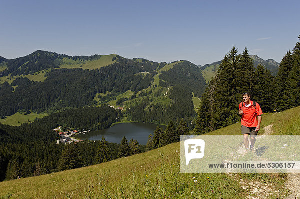 Hiker on the Obere Schoenfeldalm  mountain pasture  en route to Jaegerkamp in front of Mt Stuempfling and Mt Stolzenberg  Spitzingsee Lake  Upper Bavaria  Bavaria  Germany  Europe