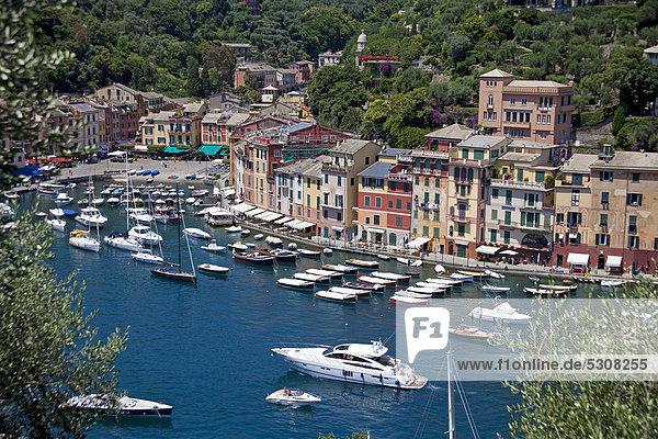 Hafen Motorjacht Europa Reichtum Italien Ligurien Portofino