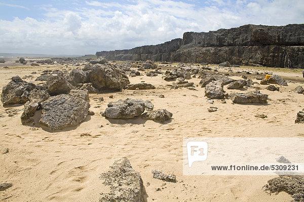 Wüstenlandschaft im Washington Slagbaai National Park  STINAPA  Bonaire  Kleine Antillen  ehemalige Niederländische Antillen  Karibik