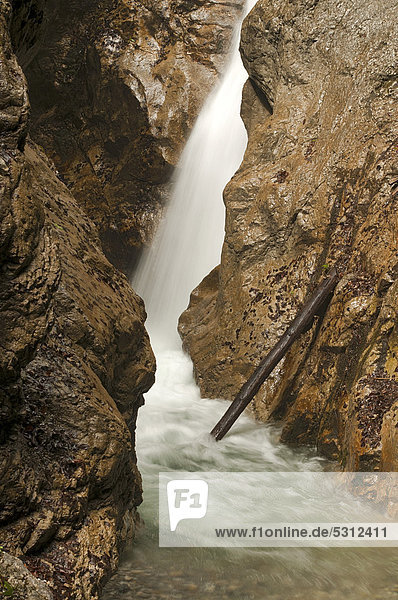 Stream in the Wolfsklamm gorge  Stans  Karwendel Mountains  Tyrol  Austria  Europe