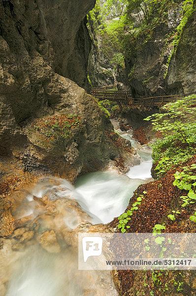 Bach in der Wolfsklamm  Stans  Karwendel-Gebirge  Tirol  Österreich  Europa
