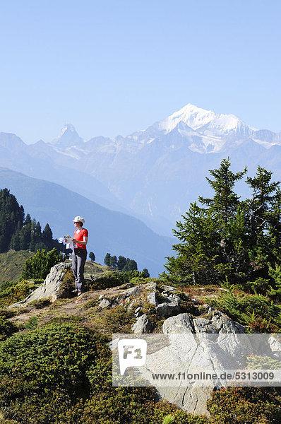 Bergwanderin vor Matterhorn und Täschhorn stehend  Riederalp  Wallis  Schweiz  Europa
