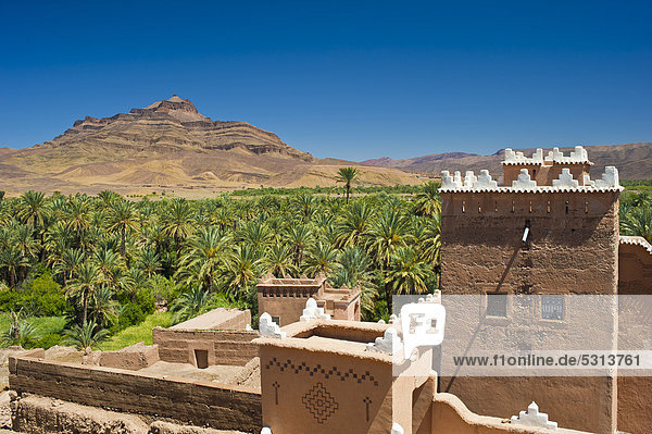 View from the roof of Qaid Ali Kasbah  Asslim  overlooking a palm grove and the Djebel Kissane mountain  Agdz  Draa-Valley  Southern Morocco  Morocco  Africa