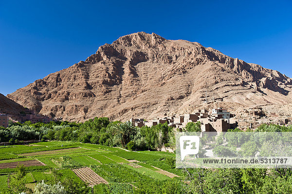 Felsbrocken Wand Baum klein Fluss frontal Dorf Feld Afrika Marokko Oase